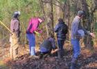 County Hosts Forestry Competition